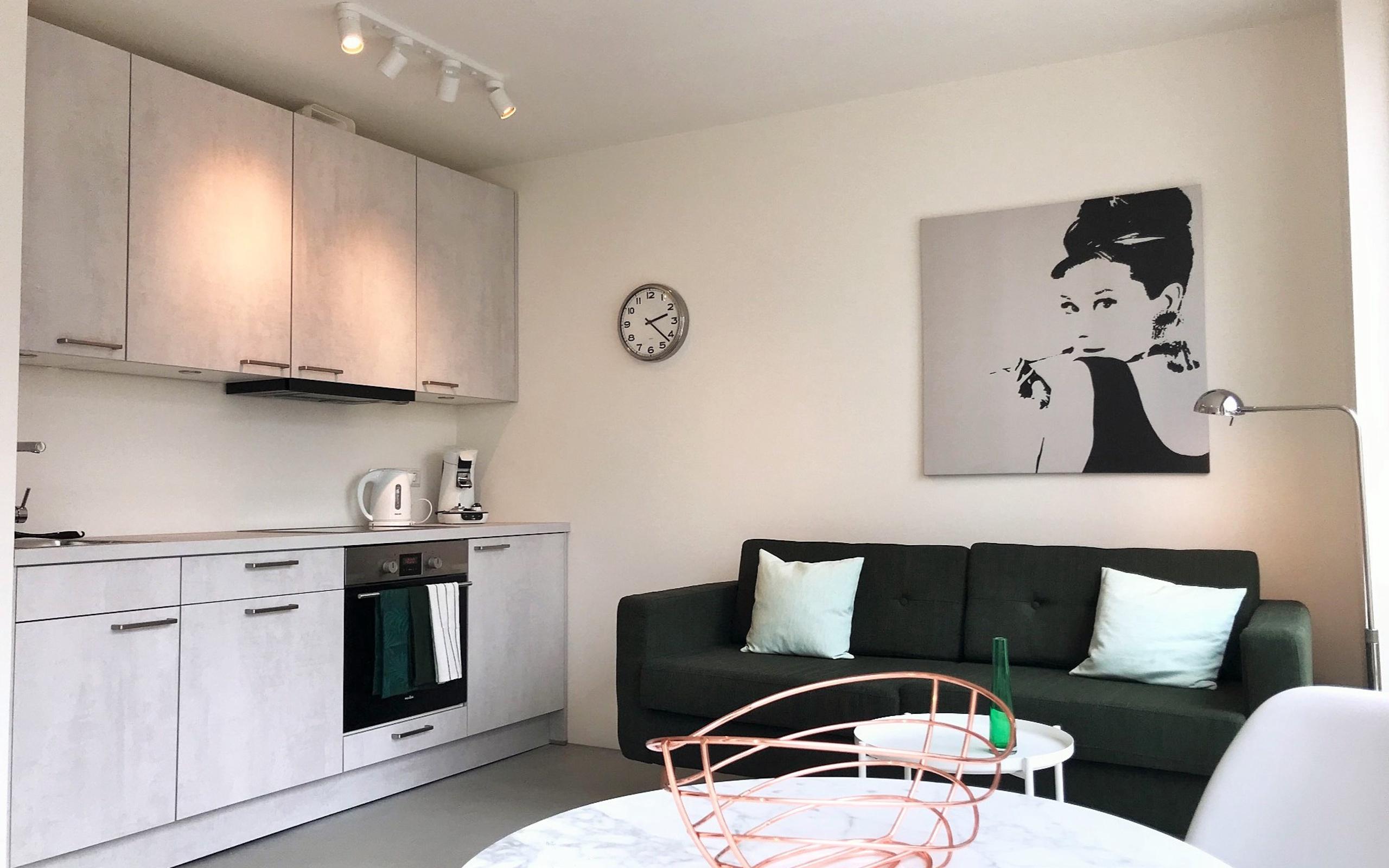 united states shades of best supplier Modernes 1-Zimmerappartement mit Internet, TV, Küche, DU/WC ...
