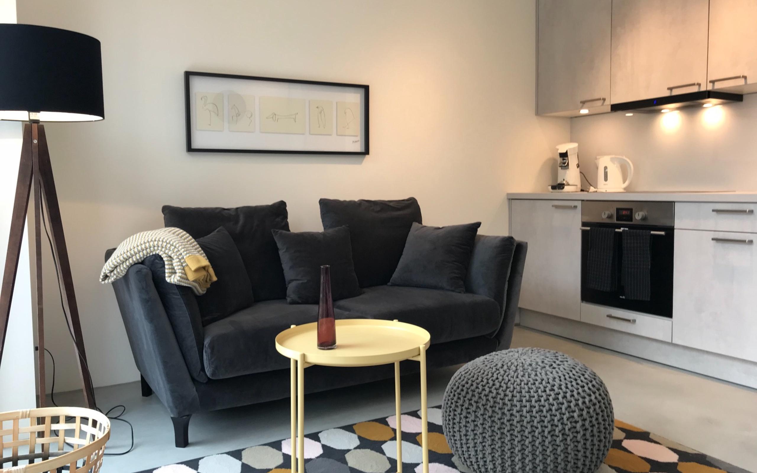 Modernes 1 Zimmerappartement Mit Internet Tv Küche Duwc
